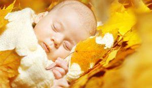 осенний новорожденный