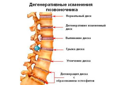 В области спины чешется болит