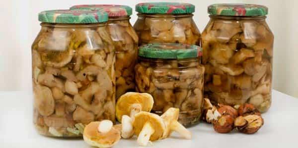 хранение-грибов-зимой