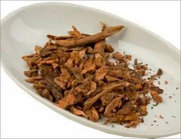 корень-бадана-лечебные-свойства