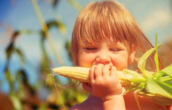 кукурузные-рыльца-лечебные-свойства-и-противопоказания-для-детей