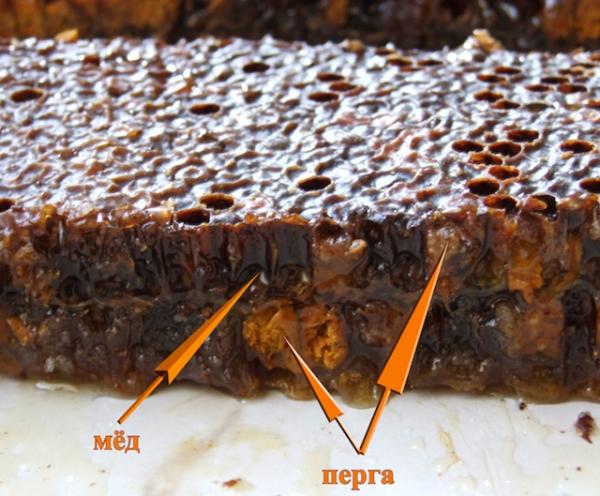 перга-мед-соты