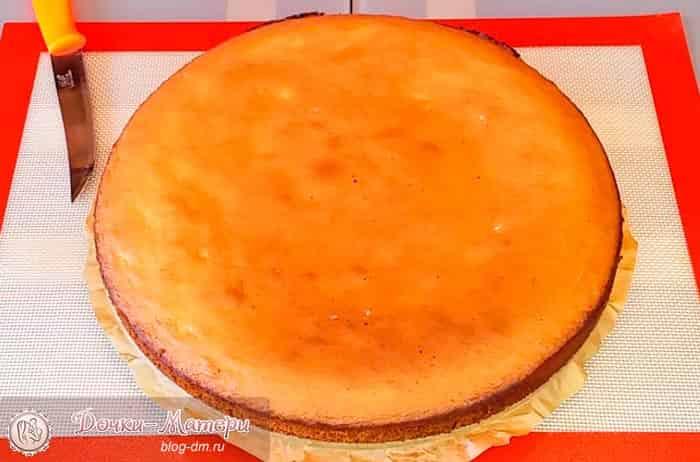 корж-для-торта