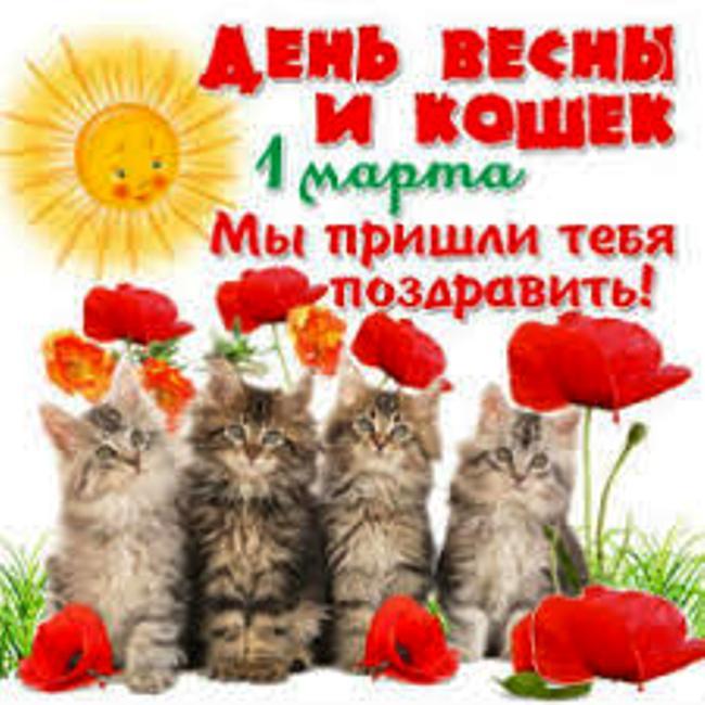 красивая-открытка-с-днем-кошек