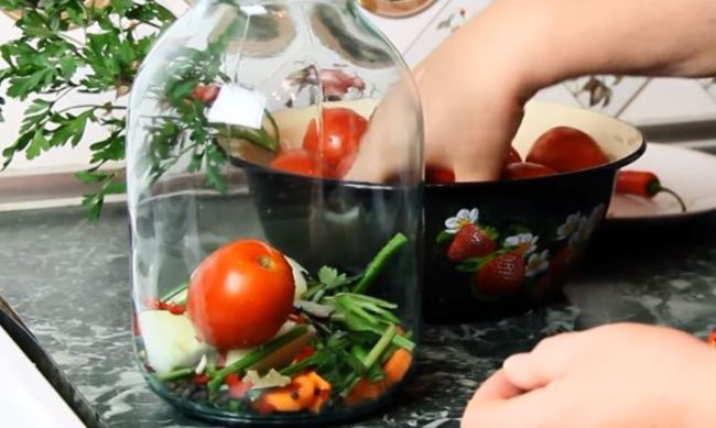солим-помидоры