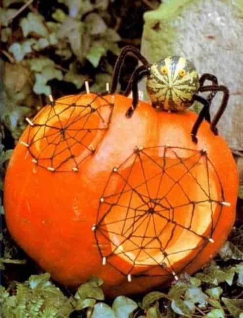 паук-и-тыква