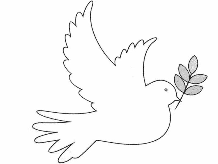 контур голубя