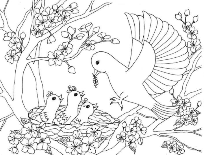 птенчики