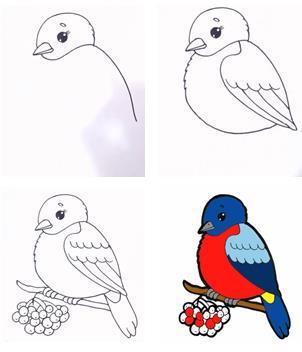 рисуем простого снегиря