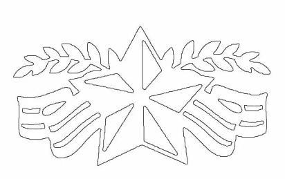 ветки и звезда