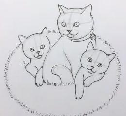 схема малышей-котят