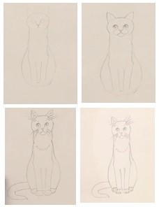 зарисовываем лапы кота