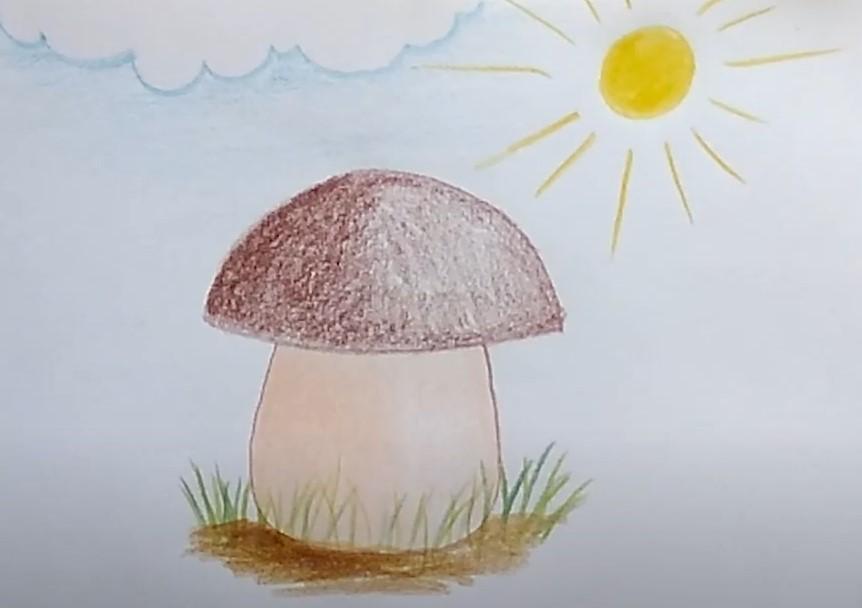 белый гриб карандашом
