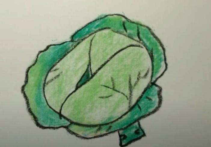 капуста рисунок для детей