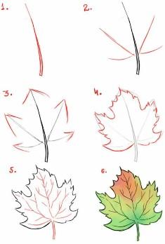 пошагово кленовый лист