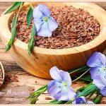 применение-льняного-семени