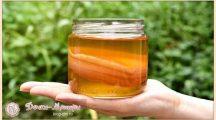 Чайный гриб— как ухаживать и употреблять