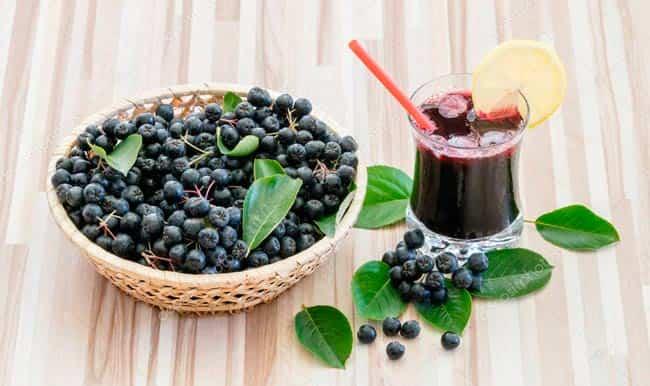 черноплодная-рябина-польза