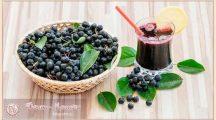 Лечебные свойства и противопоказания черноплодной рябина