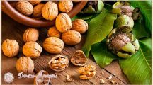 Полезные свойства и противопоказания грецкого ореха для мужчин и женщин