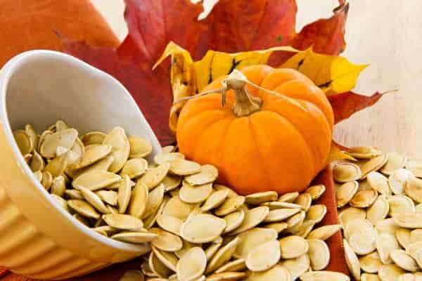 семя-тыквы-полезные-свойства-и-противопоказания