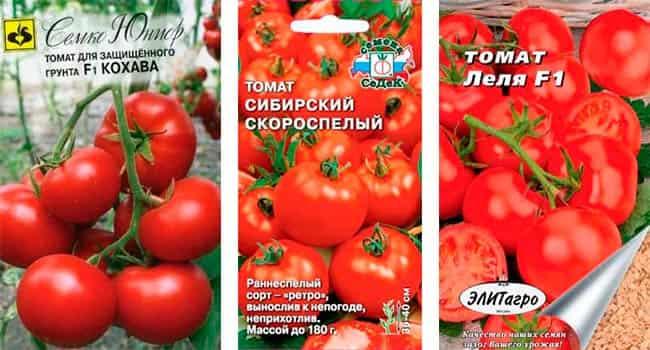 приготовления томат кохава отзывы фото такой вид боевых