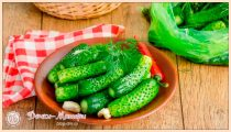 Малосольные Огурцы – 5 Рецептов Быстрого Приготовления