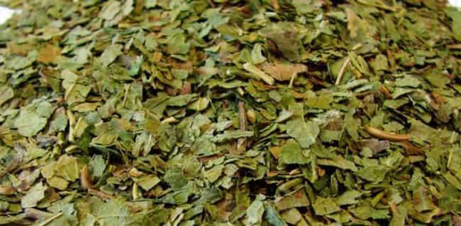 сушеные-листья-смородины
