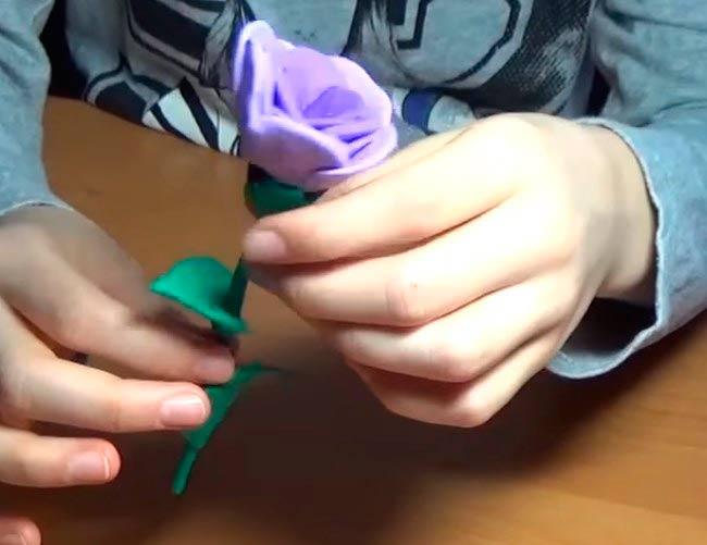 роза-готова