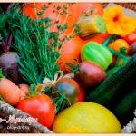 лунный-календарь-садовода-и-огородника