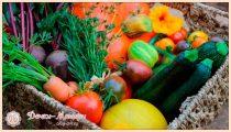Лунный календарь для садовода и огородника на 2022 год