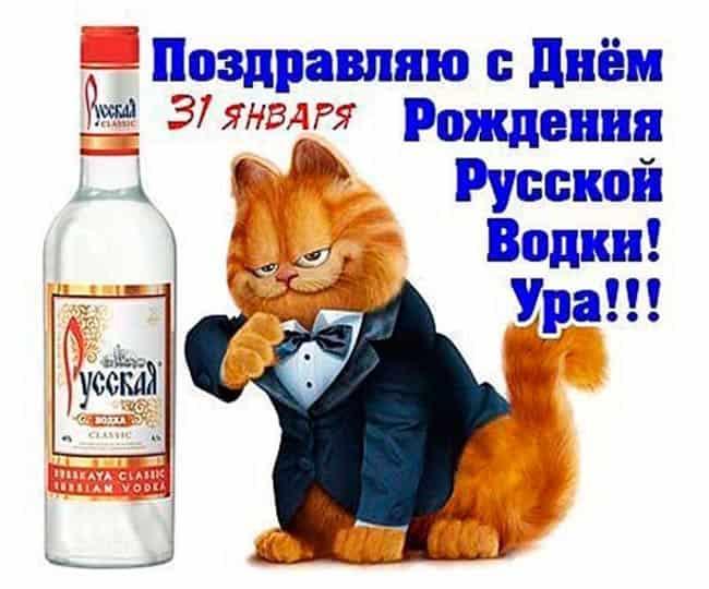 den-russkoy-vodki