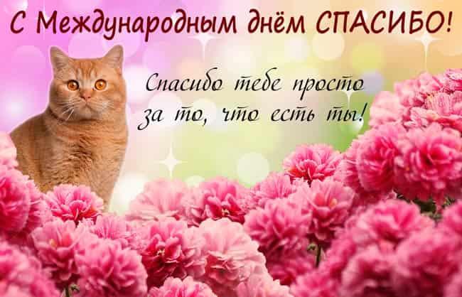 mezhdunarodnyy-vsemirnyy-den-spasibo