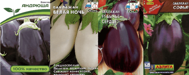 софья-андрюша-баклажаны