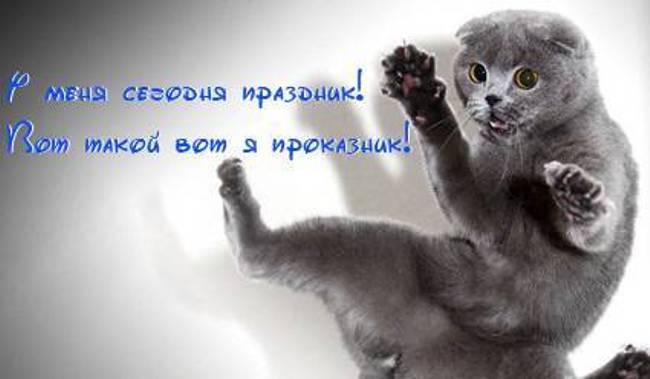 1-марта-день-кошек