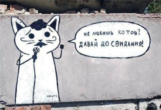 открытка-для-любителей-котов