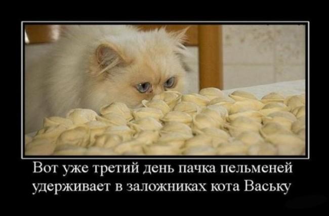 с-праздником-пельменей