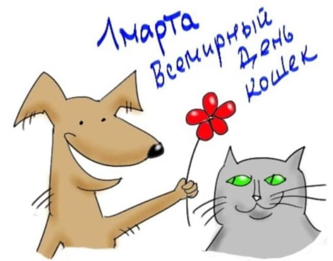 собака-и-кошка