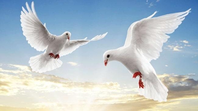 прощеное-воскресенье-красивая-картинка