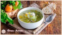 Щи из свежей капусты — пошаговые рецепты приготовления