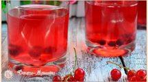 Компот из красной смородины – простые рецепты на зиму