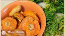 Как солить рыжики на зиму, чтобы были хрустящими и вкусными