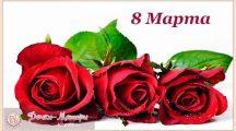 Самые красивые поздравления с 8 Марта для женщин в стихах